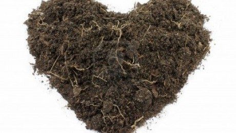 12455463-heart-shape-soil-isolated-on-white-background