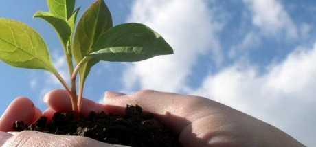 Crecimiento-económico-y-desarrollo-715x214