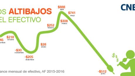 CNE-250X500Altibajos-webpost