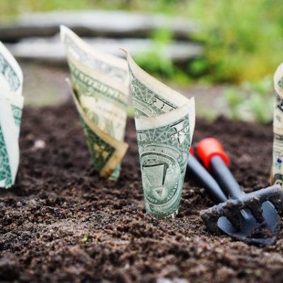 Ajuste fiscal y la economía