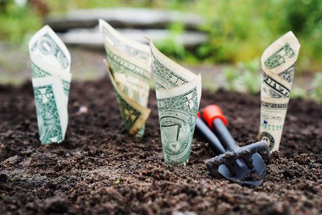 Buried dollars
