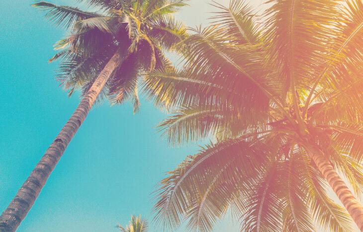 CNE 2021 Summer Reading List